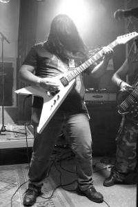 2014_new_bass